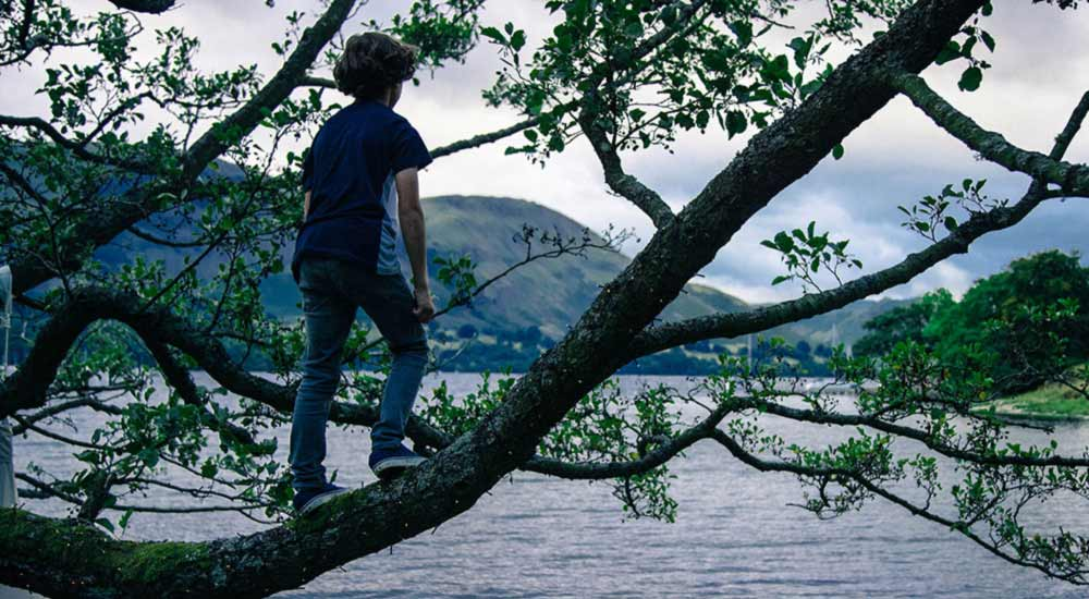 Young boy climbing a tree and looking out over Ullswater