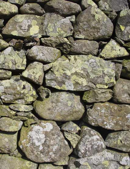 Stone wall in the Lake District