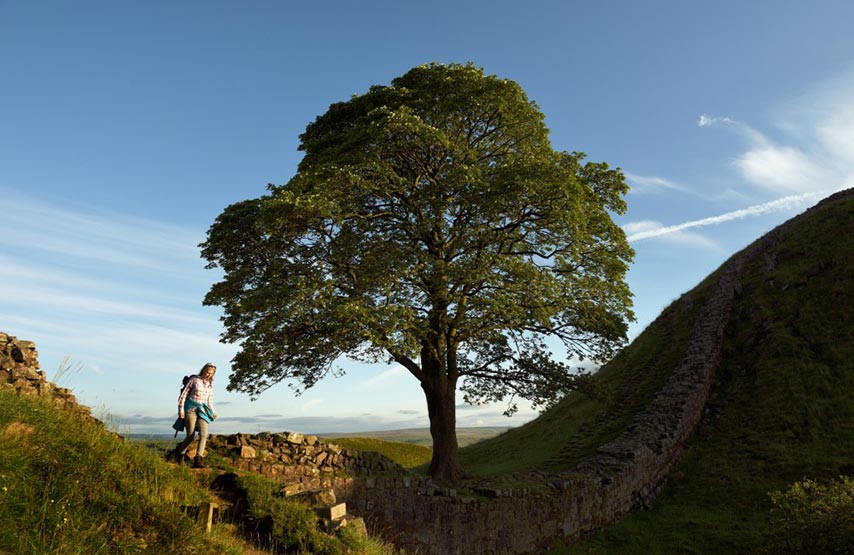 Hadrians Wall is an ancient northern frontier of the mighty Roman Empire