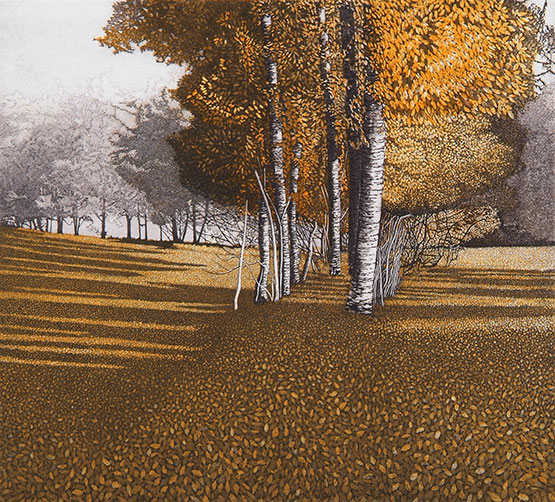 Amber Light by Phil Greenwood