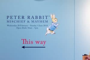 Peter Rabbit in The Lakes