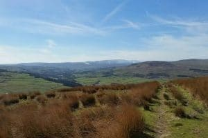 Guided walks in the Eden Valley with Visit Eden 17 – 25 March