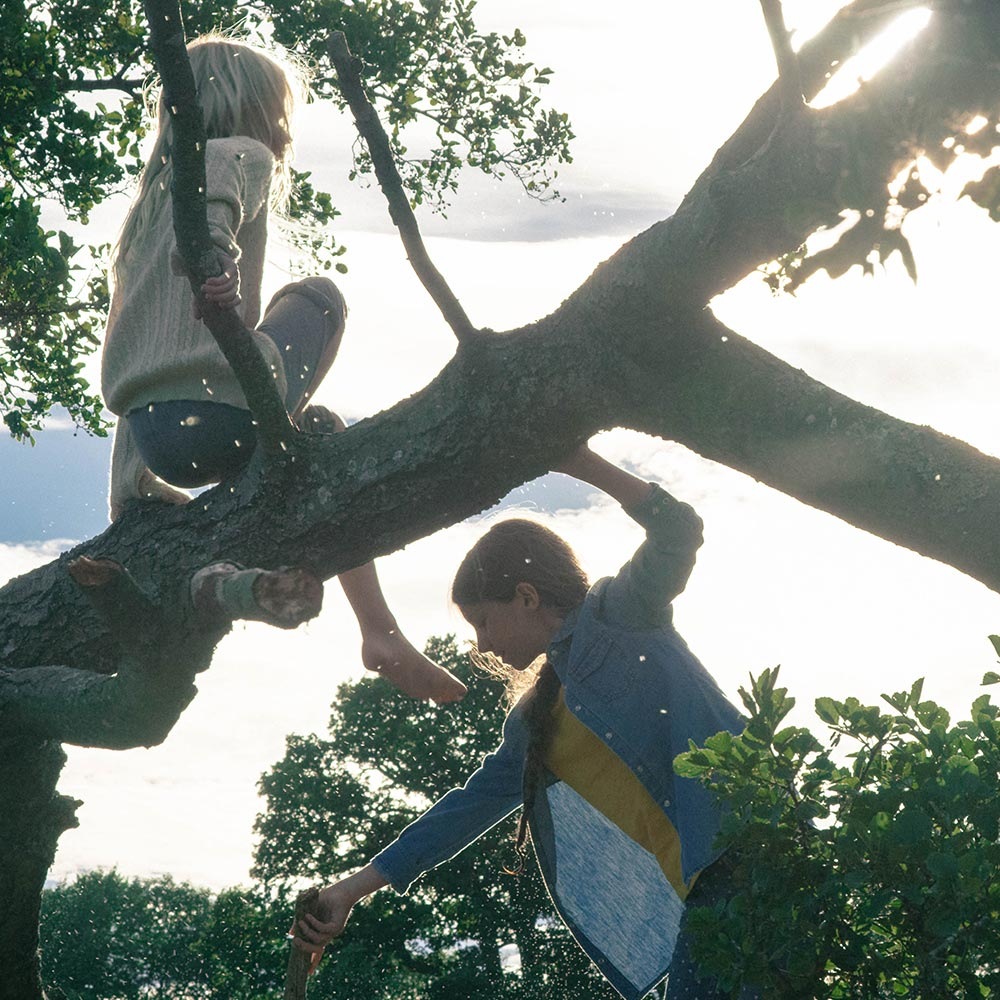 2 young girls climbing trees