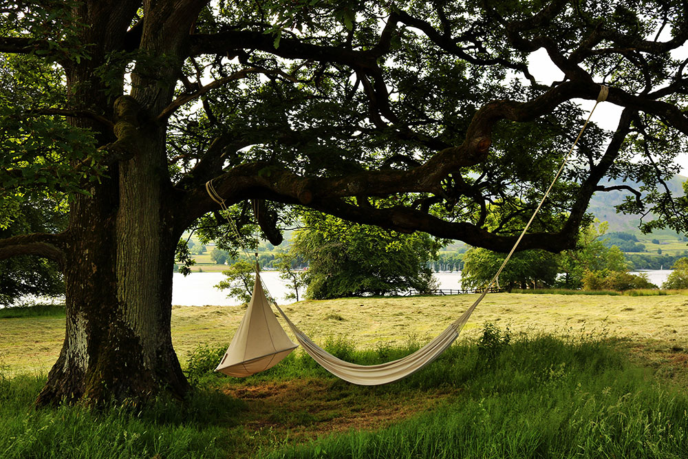 Hammock and tree swing
