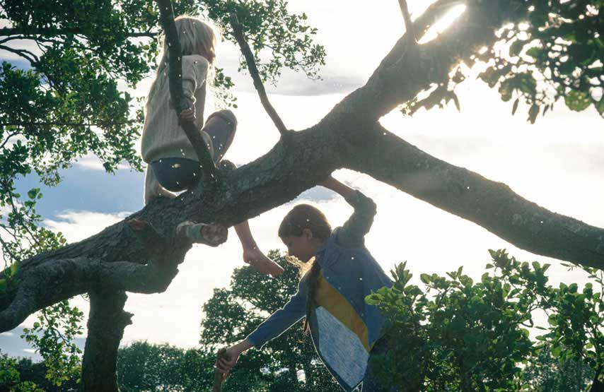 Children climbing trees by the lake