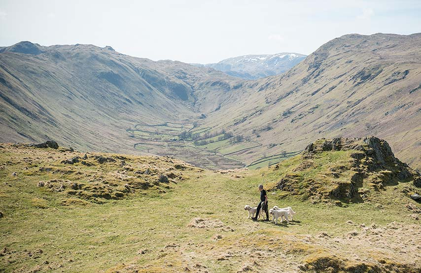 Dog walker on the Hallin Fell walking trail