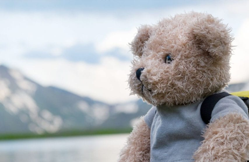 Teddies Go Free with Ullswater Steamers
