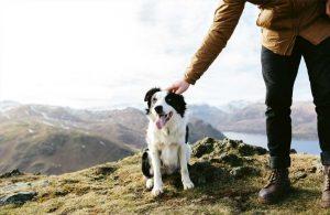Walking the dog on the surrounding fells