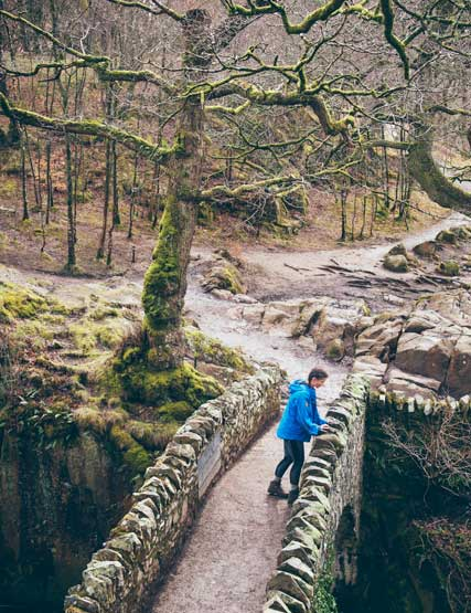 A girl takes a look over Aira Force