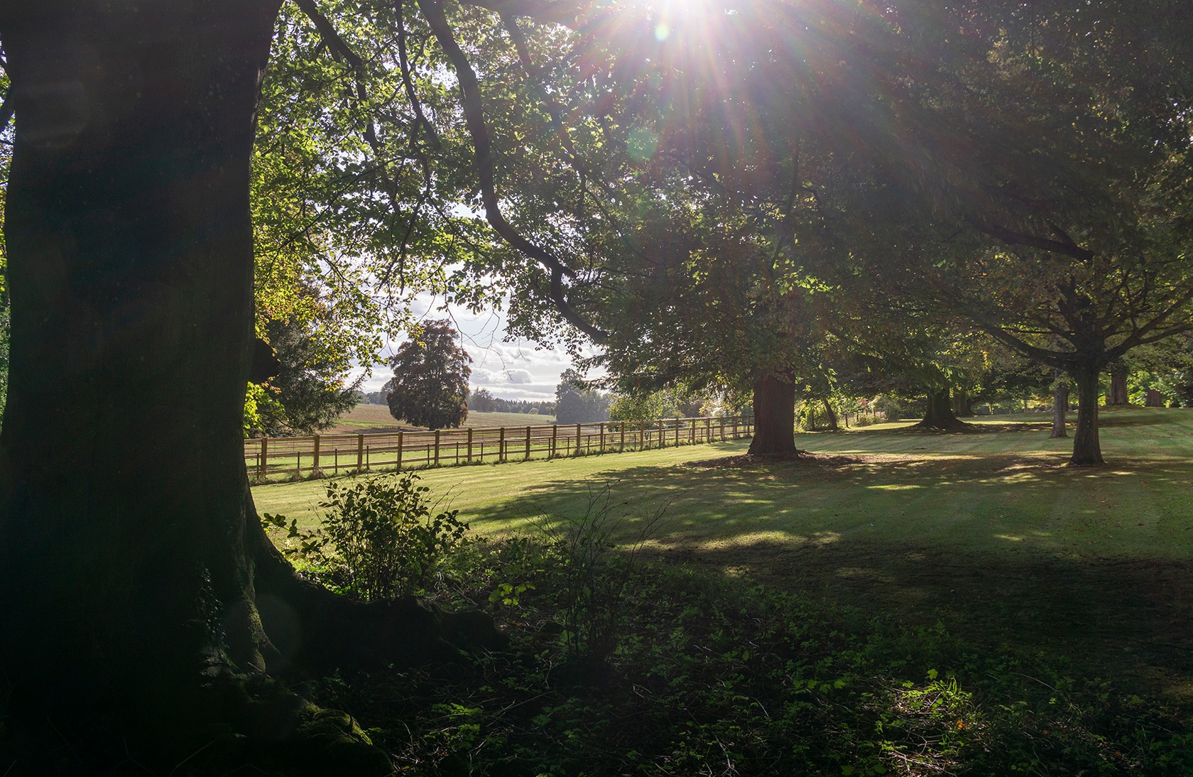 Grounds of Amport House