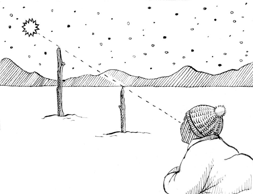 Lia Leendertz's annual Almanac seasonal guides